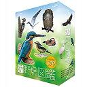 新 野鳥図鑑 Blu-ray BOX 全4枚セット 10P03Dec16