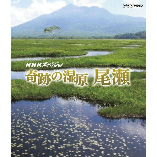 NHKスペシャル 奇跡の湿原 尾瀬 冬から初夏にかけて、最新の研究調査を交え雪が育んだ奇跡…...:nhksquare:10012559