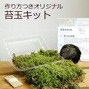 苔玉キット つくり方説明書付 ハイゴケ 手作り 初心者 こけだまの材料 かんたん作成キット 苔・苔玉用に配合した土・糸 イベント