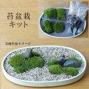 盆栽苔が主役の苔盆栽!材料すべてお届けします 苔盆栽(こけぼんさい)キット~矢作砂
