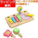 楽器玩具 音楽 木のおもちゃ 木製 エデュテ ファーストMU...