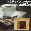 【定期購入】 ダイエットコーヒー エクササイズコーヒー 1袋コース30本入約30日分【初
