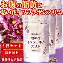 お腹の脂肪に 葛の花イソフラボンスリム(120粒入/約1