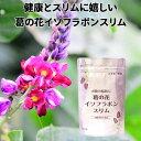 葛の花 サプリ お腹の脂肪に 葛の花イソフラボンスリム 30日分120粒入 1袋 葛の花 サプリ ダイエット サプリメント 機能性表示食品 送料無料