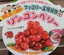 【大株】リンゴンベリー(苔桃の仲間)「☆」