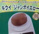黄色いキウイフルーツ:ジャンボイエロー(メス木)《果樹苗》