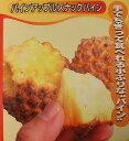 スナックパイン《熱帯果樹苗》「☆」