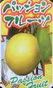 イエローパッションフルーツ 《熱帯果樹苗》