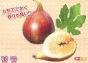 リサ(ジャンボイチジク)《果樹苗》「☆」
