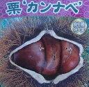 超巨大栗 神鍋(カンナベ)《果樹苗》「☆」