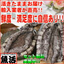 活蝦夷あわび3L(140/160g)5枚入