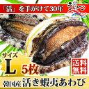 活蝦夷あわびL(90/100g)5枚入