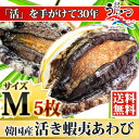 活蝦夷あわびМ(70/80g)5枚入
