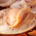 ホンビノス貝・白はまぐり 殻無・半割り済 冷凍 1パック 約200g×5枚入(飲食店向け業務用) BBQにも【訳あり半額特価】