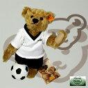 2006年 サッカー ワールドカップ 画像