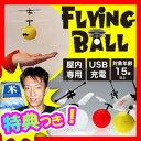 ★最大43倍+クーポン★ FlyngBall フライングボー...