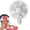 ★最大43倍+クーポン★ 壁掛け扇風機 テクノス 30cm壁...