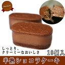ギフト 半熟 ショコラ ケーキ 10個入  スフレ 半熟 ス...