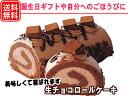 生チョコロールケーキ 17cm ロールケーキ あす楽対応 バースデーケーキ ギフト 冷