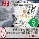 お米 5kg 送料無料 新米【特別栽培米 朱鷺と暮らす郷 5kg】こしひかり お米 平成29年産 新
