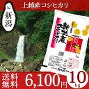 米物語 上越産コシヒカリ 10kg(5kg×2) 送料無料 お米 新潟 JA上越 平成29年産 ブラ