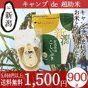 キャンプde超助米 カレールー150g 新潟産こしいぶき90