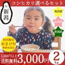 お米 4kg 送料無料 30年産 「新潟米 いなほんぽのコシ