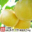 家庭用!土田農園の日本梨 新潟県産 あきづき 5kg(7〜1...
