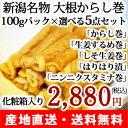 新潟名物「大根からし巻き(100g)」選べる5点セット 岩崎食品【秘密のケンミンショ?で紹介】【だい