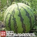 南魚沼 八色産スイカ 大玉2Lサイズ2個入り(1個...