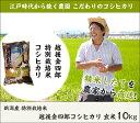 ≪西海水産≫能登 もみいか(丸干しいか)500g【おつまみ 肴 日本酒 ビール いしり 無添加 鍋 能登半島 珍味】
