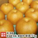 訳あり!樋口農園の日本梨 新潟県産 家庭用 新高 5kg【新...