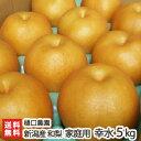 訳あり!樋口農園の日本梨 新潟県産 家庭用 幸水 5kg【幸...