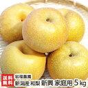 新潟産 岩福農園の日本梨 家庭用 新興 5kg(6〜10玉)【新興梨】【11月上旬頃から順次発送】【送料無料】