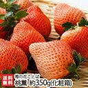 桃のような新品種の苺「桃薫」化粧箱入 約350g(9〜15粒...