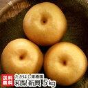 新潟産 日本梨 贈答用 新興 5kg(6〜11玉)たかはし果...