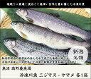 コシヒカリ 新潟県魚沼産こしひかり 4.5kg アイリスの生鮮米こしひかり 米 コシヒカリ 魚沼 お米 コメ パック 小分け 3合 アイリスオーヤマ[cpir]