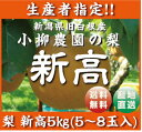 新潟県白根産 小柳農園の【和梨】新高5キロ!5〜8個入!