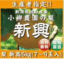 生産者指定!【新潟県白根産】小柳農園の新興5キロ!,7〜9個入!!