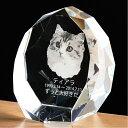 ペット 位牌 【ペット 仏壇】ラウンドカットの美しいクリスタル位牌『トゥインクルムーン』透明 きらきら ペット供養 サンドブラスト きれい かわいい 写真立 ペット位牌 形見 メモリアル キラキラ