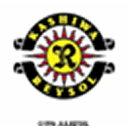 2016 Jリーグ カード チームエディション・メモラビリア 柏レイソル BOX(送料無料)