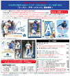 (予約)EPOCH 横浜DeNAベイスターズ ベースボールカード 2016 シーズン・アチーブメント(11月下旬発売)