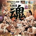 BBM 2017 大相撲カード 「魂」 BOX