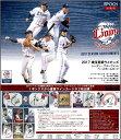 EPOCH ベースボールカード 高級版 2017 埼玉西武ライオンズ シーズン・アチーブメント(送料
