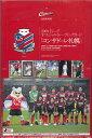 ■セール■2009 Jリーグオフィシャルトレーディングカード コンサドーレ札幌