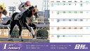 2017年度南関東版日刊競馬卓上カレンダー(ケースなし)