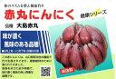 赤丸にんにく(ニンニク) 小袋詰(鱗片10片入)