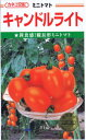 ショッピングトマト カネコ種苗 トマト・キャンドルライト 約100粒 【郵送対応】