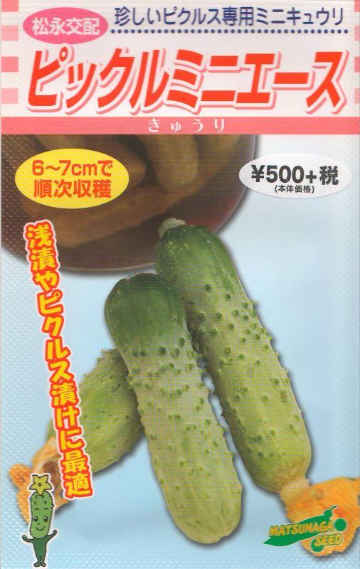 ピックルミニエース(種)