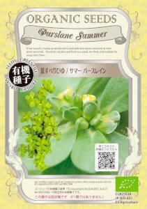 【有機種子】 夏スベリヒユ/サマーパースレイン 0.4g【郵送対応】